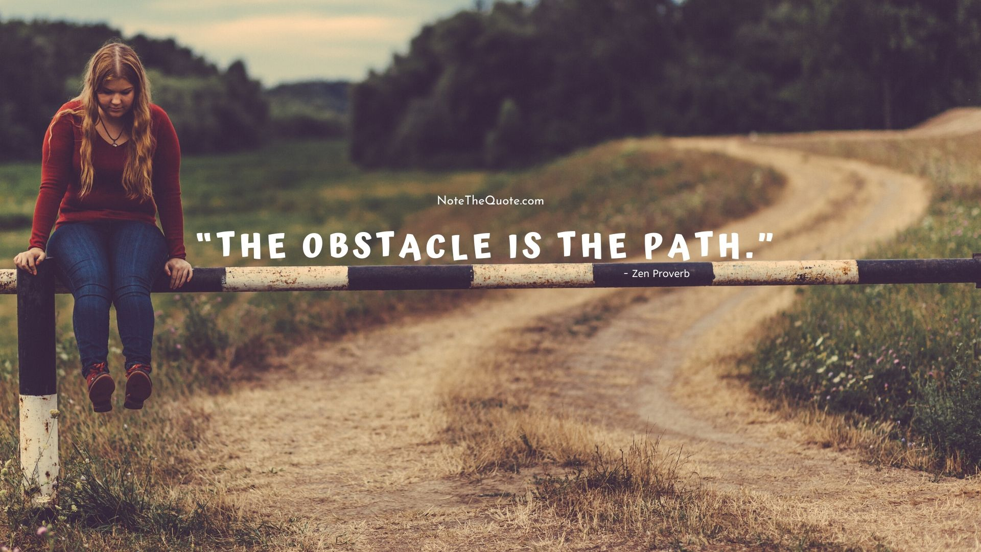 You are currently viewing The Obstacle is the path.